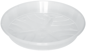 clear orchid saucers